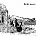Valle Crucis Abbey drawing by Mike Brown
